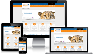 Responsive Website Design Durban